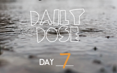 Daily Dose #07